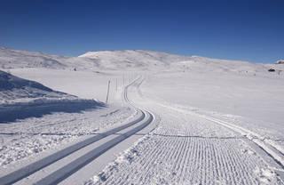 Geilo offers over 220km of cross-country skiing. (photo: Marius Rua)