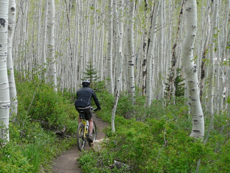 Mountain biking at Utah's Deer Valley Resort (photo: FTO/Todd Copeland)