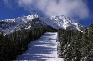 Jagged terrain crowns the groomers off Norquay's Mystic Express lift. (photo: FTO/Kevin Gawenus)