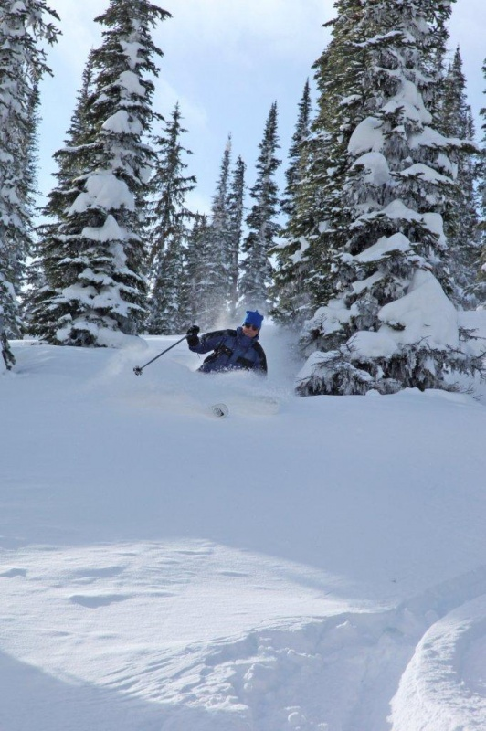 The author enjoys steep trees and fresh powder at White Grizzly (photo: Karl Weatherly)