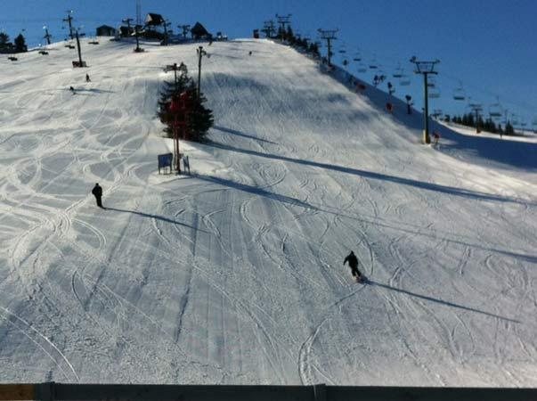 michigan skier dies of injuries sustained in crash