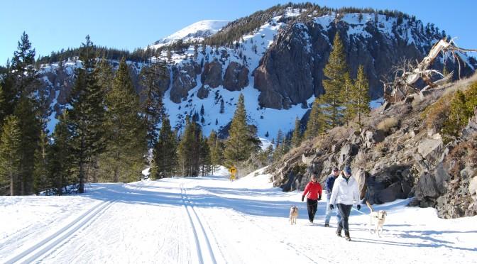 Adventure Dining on Skinny Skis