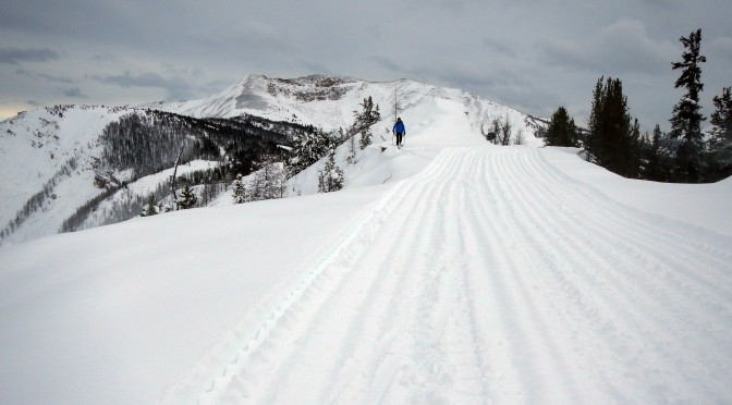 Panorama Pro Patroller JC Morel looks into Donny B's from the new Taynton Bowl ridgetop access road on Thursday. (photo: R. R. Andrew Nelson)