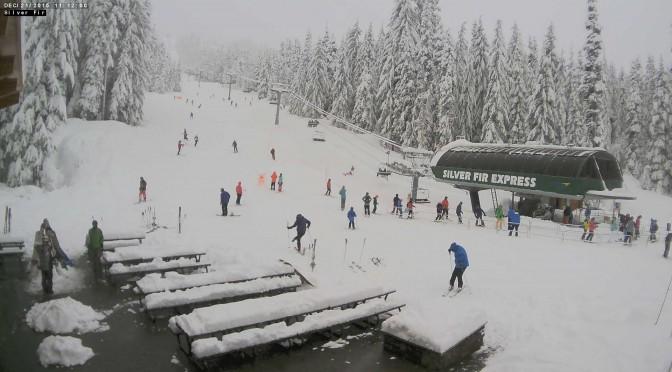 Skier Suffocates in Tree Well in Washington
