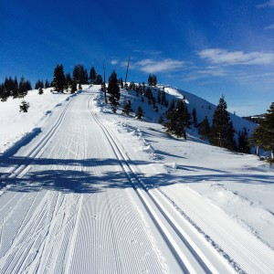 (photo: Tahoe Donner Cross Country)