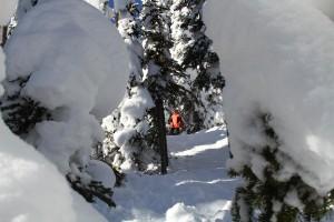 (photo: Lost Trail Ski Area)